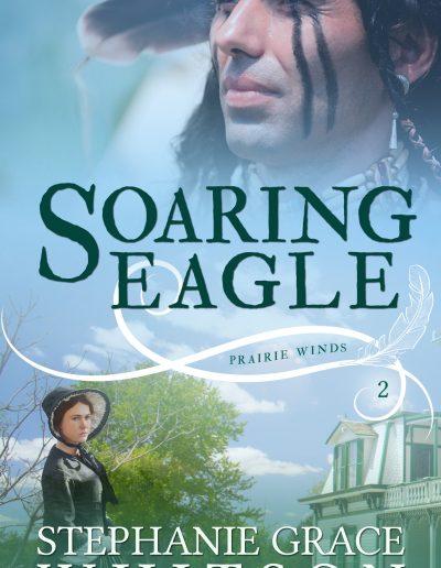 Soaring Eagle 3